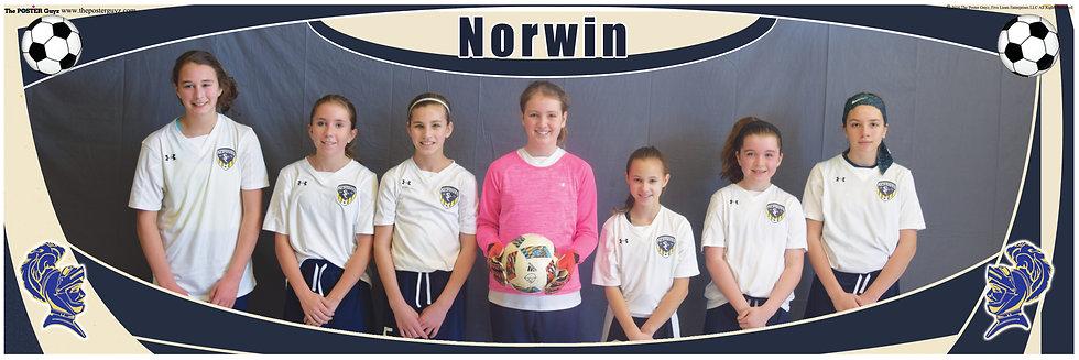 Norwin Fighting Knights U12G