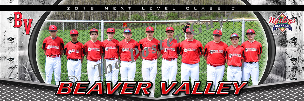 Beaver Valley White 13u