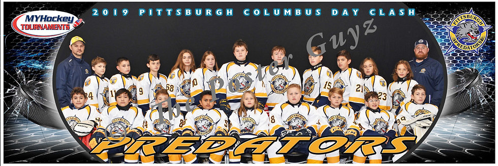 Pittsburgh Predators Peewee A2