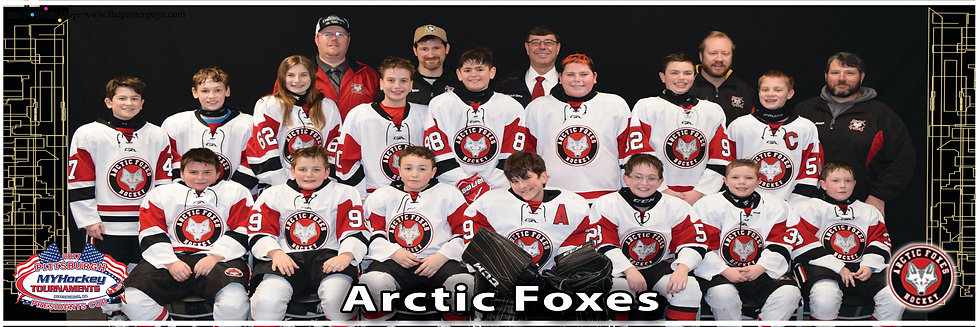 Arctic Foxes Pee Wee B