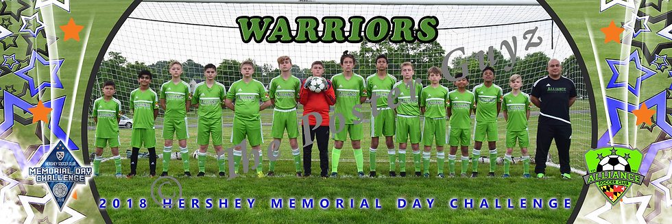 Alliance Warriors Grey Premier u13B