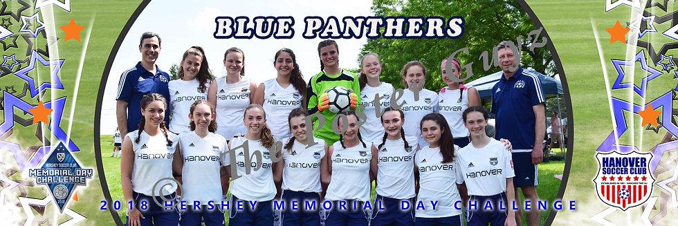Hanover Blue Panthers u15G