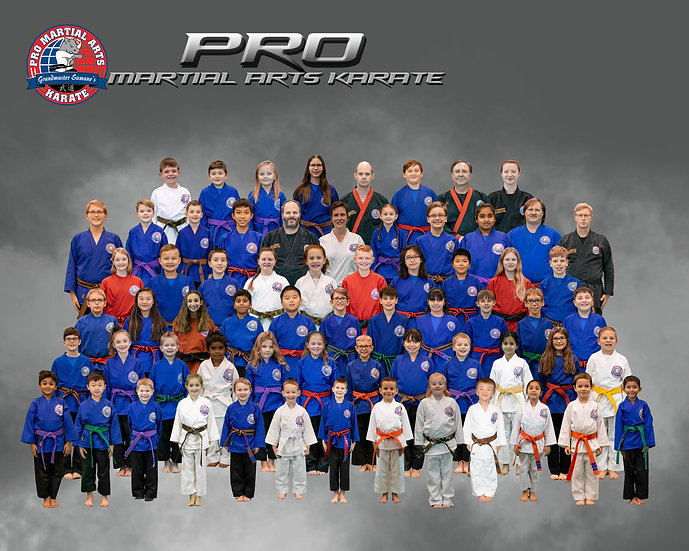 Pro Martial Arts Karate Team in Grey with Smoke