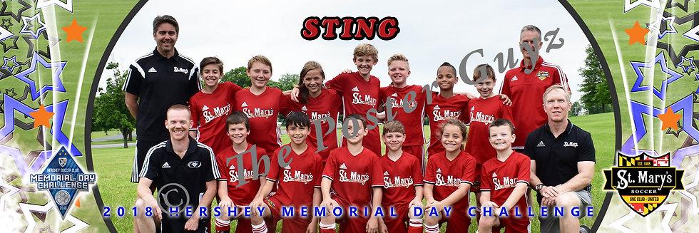 St Mary's Soccer Sting u11B