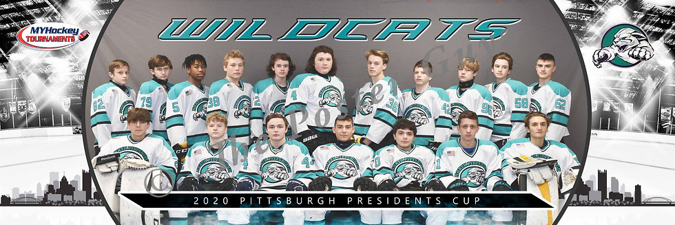 North Pittsburgh Wildcats Midget Minor A Gold