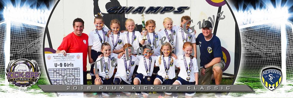Norwin Girls U9 Champions