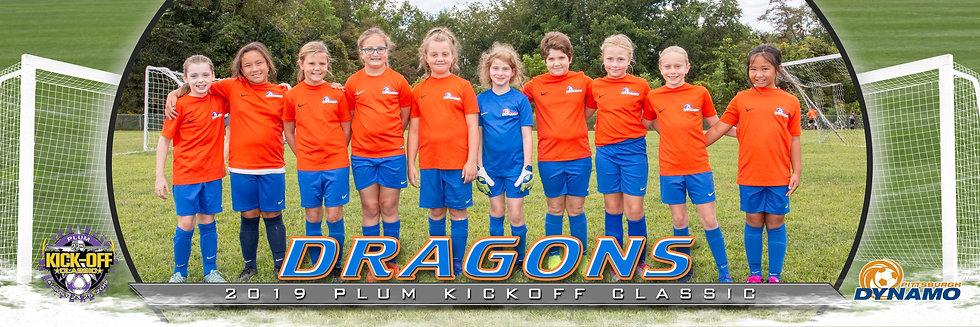 Pittsburgh Dynamo Dragons  - Girls U12 BRONZE