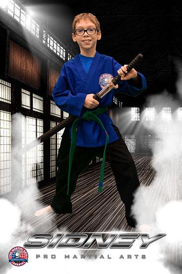Sidney - weapon picture in dojo