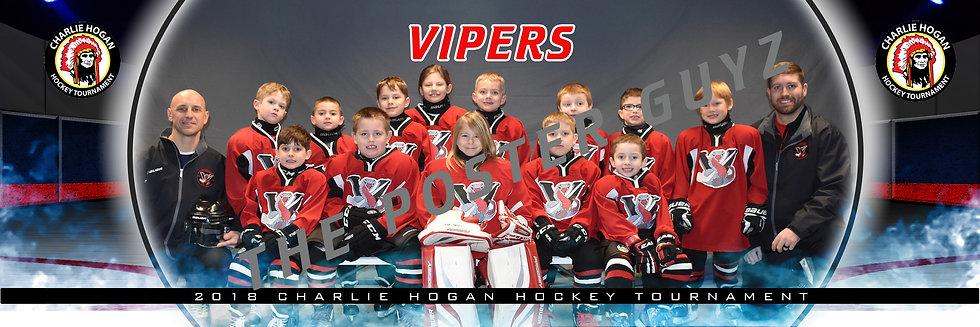 Vipers Litz