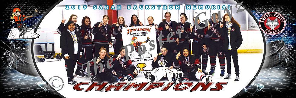 Arctic Foxes 16U Rec Champions