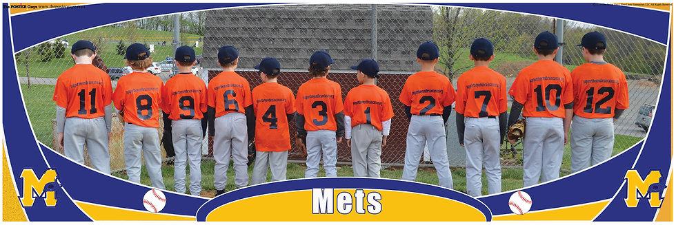 Mets Minor Backs