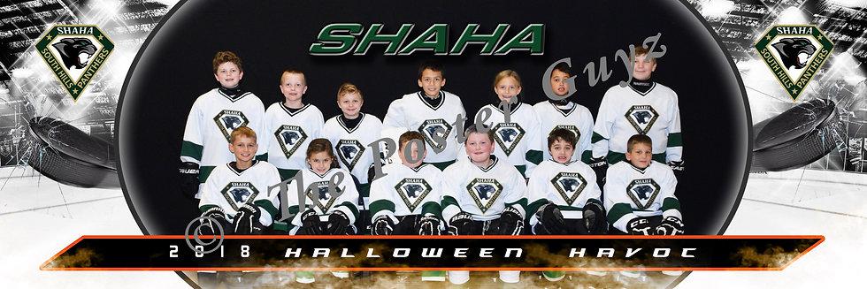 SHAHA Panthers - B Division