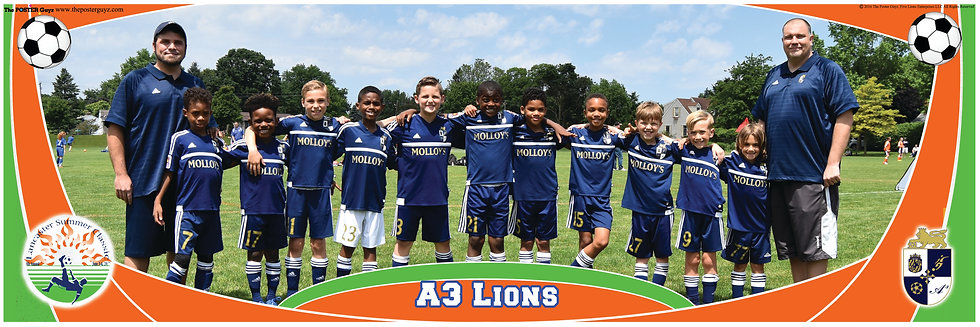 A3 Lions Blue U9B