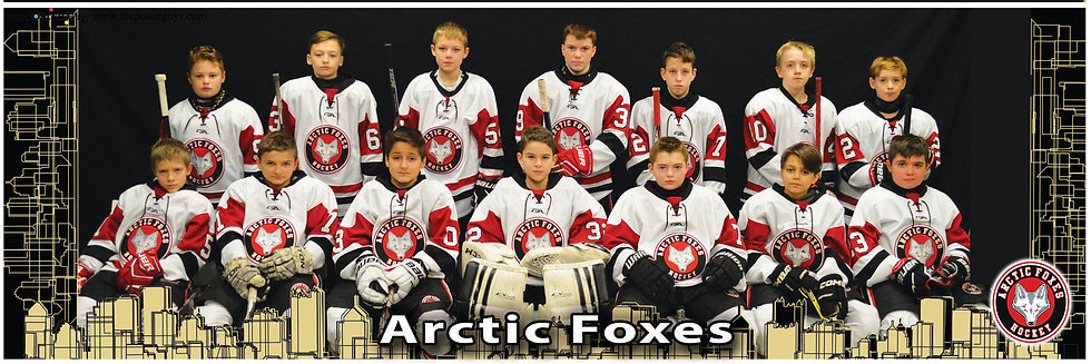 Arctic Foxes Pee Wee Minor A