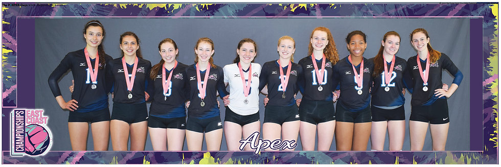 Apex 17 With Silver Medals