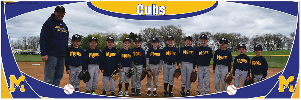 Cubs Farm 7
