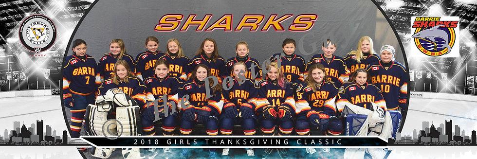 Barrie Sharks U10-T2