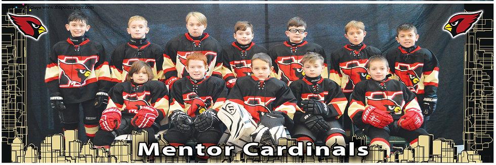 Mentor Cardinals
