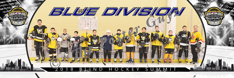 Blind Hockey Blue Division