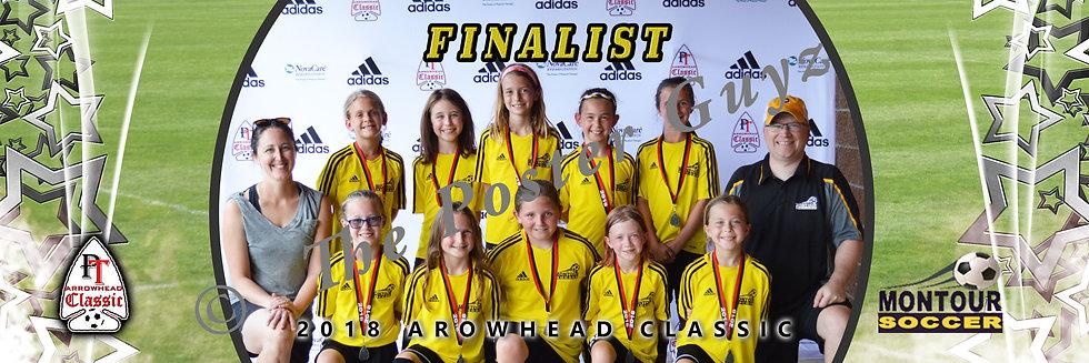 Montour U10 Girls Silver Division Finalist