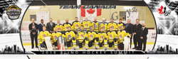 Blind Hockey Team Canada v3