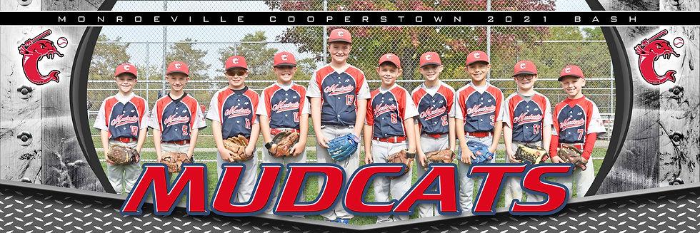 Mudcats 9U
