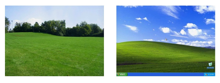 Field/ Windows Desktop