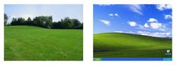 Field/ Windows Desktop