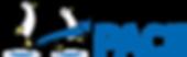Penguin Pace Logo