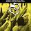 Thumbnail: EMMANILLATS - Jordi Daltell