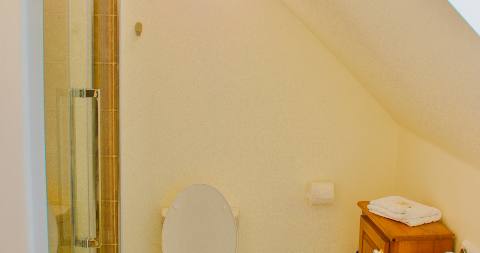 The bathroom has another smaller skylight and large walk-in shower.