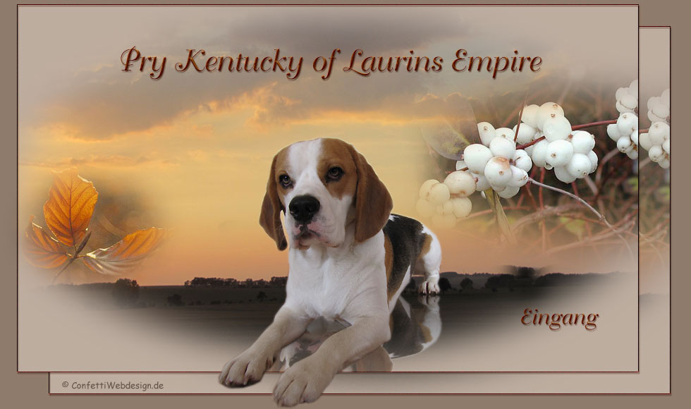 Laurins Empire