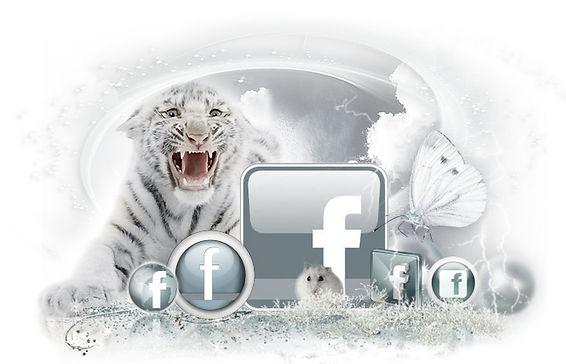 Confetti ART&DESIGN Facebook