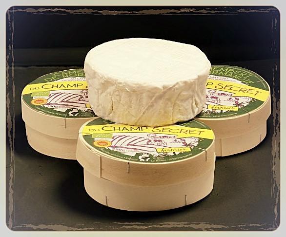 Camembert AOP fermier et bio ©Clémentine Chauveau