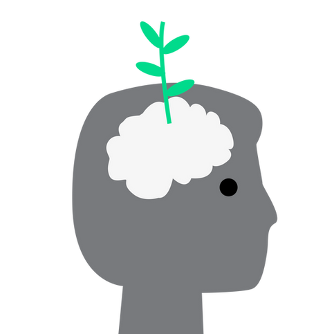 plant growth2.png