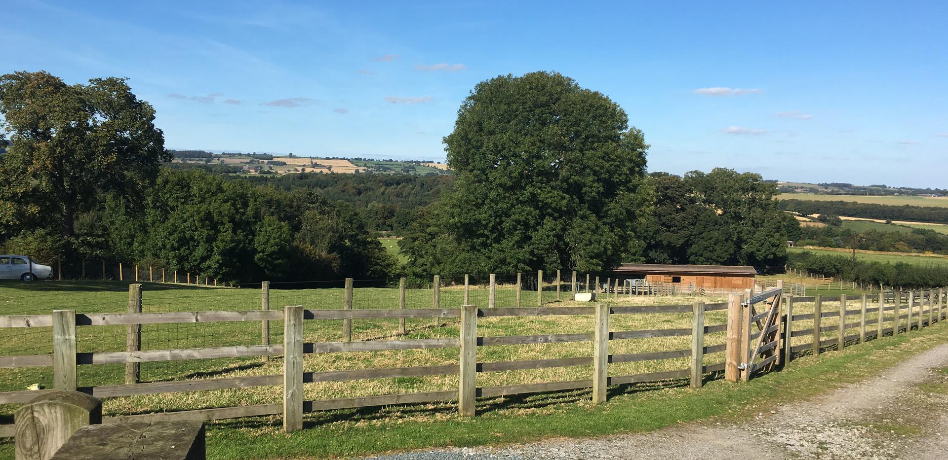 Private 3 acre paddock