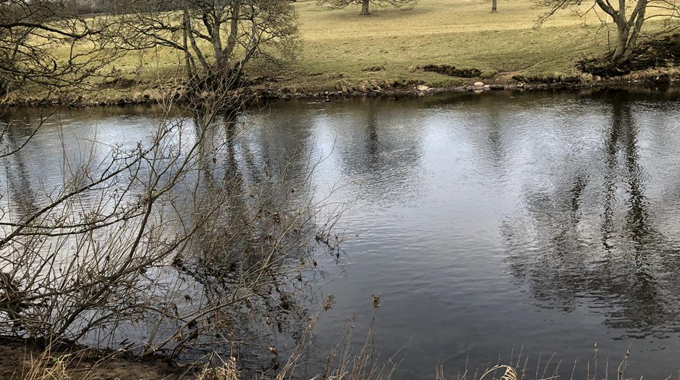 Winter river walk