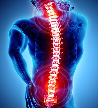 Spinal Chord Xray Photo