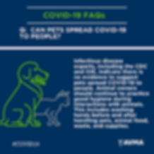 COVID 19 can pets spread 1080x1080 (13).
