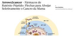 arrows2cancer SPQ