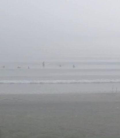 8月28日の朝の波