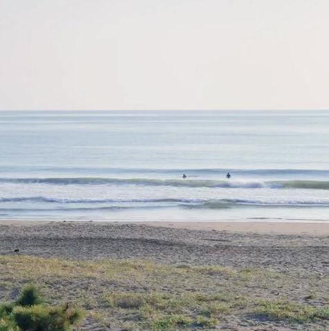 8月30日の波