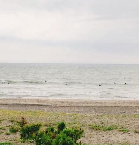 8月29日の朝の波