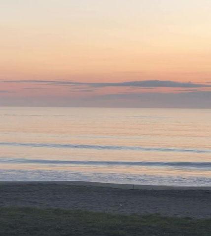 7月24日朝の波