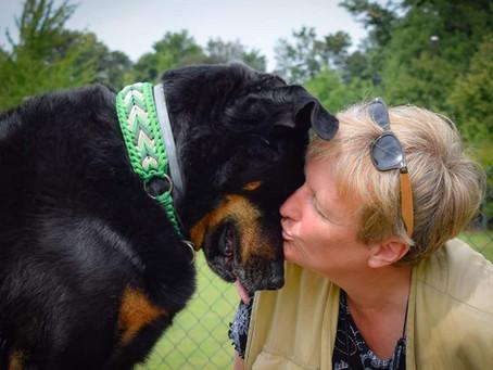 Der eigene Hund ein Problemhund? – aus dem Hunde-Leben einer Hundetrainerin
