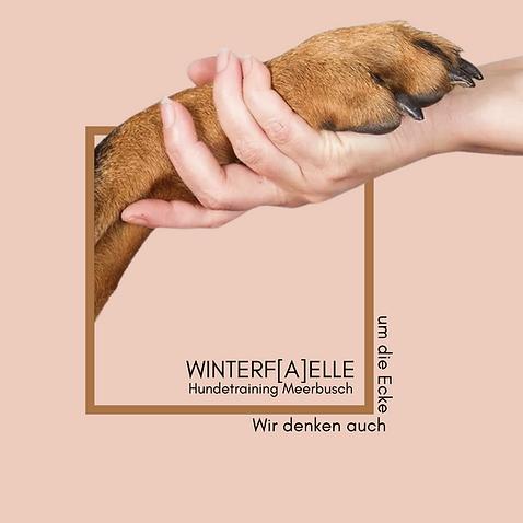 WINTERF[A]ELLE(3).png