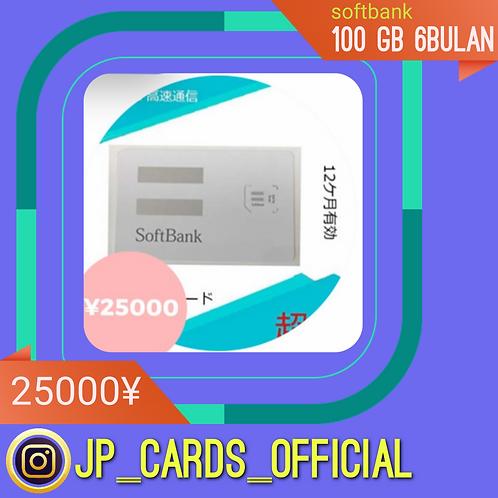 Softbank 100Gb