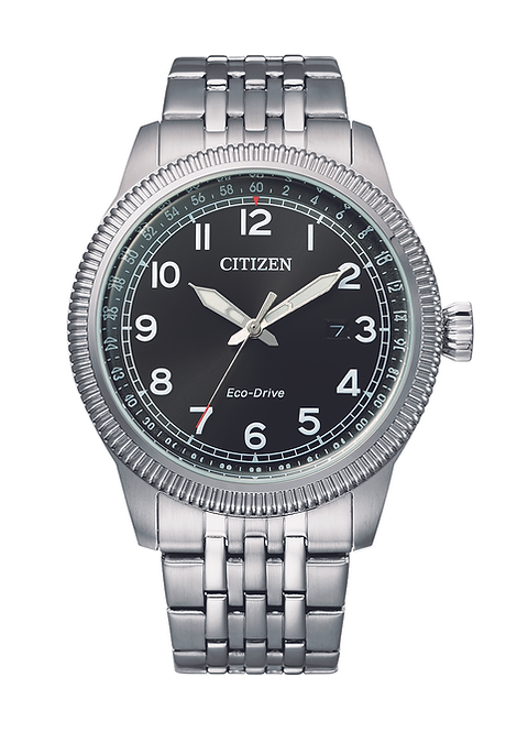 Citizen military watch
