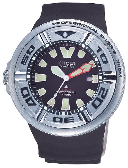 Citizen diver