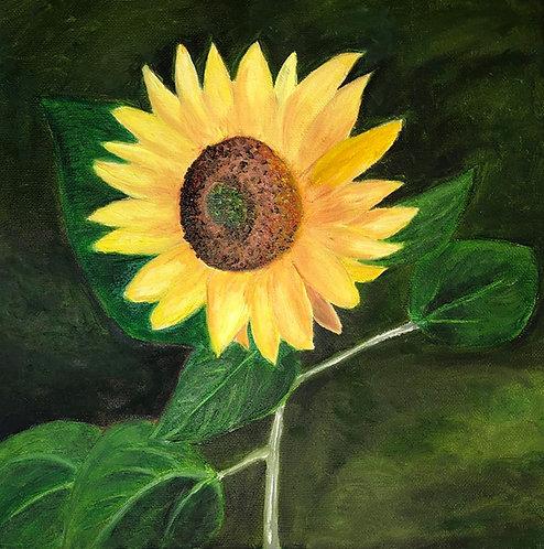Sunflower (original oil painting 12x12)